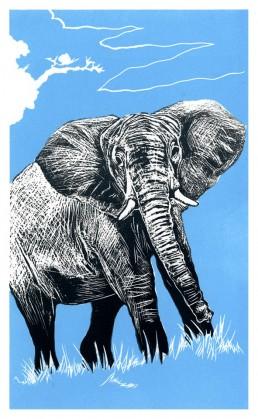 elephant lino cut print matthew braithwaite